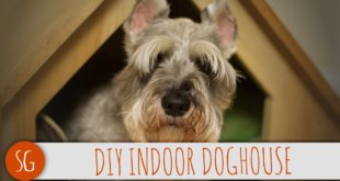 ? Cheap and easy modern doghouse that you can make! | How-to