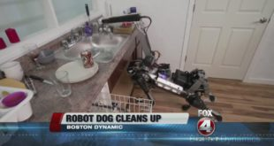 Robotic dog helps clean up around the house